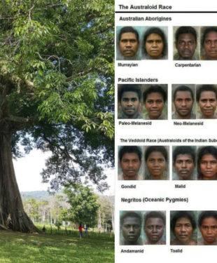 buglas ati people negritos BagongPinay Omehra Sigahne